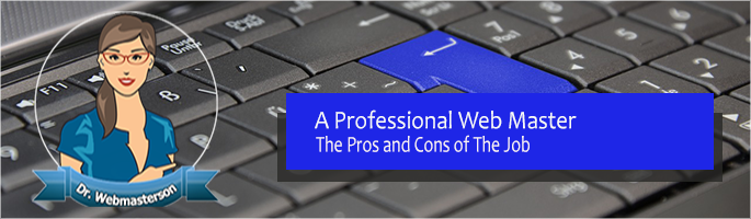 The Pros and Cons of Being a Professional Web Master