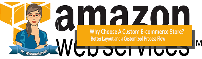Why Choose a Custom e-Commerce Store